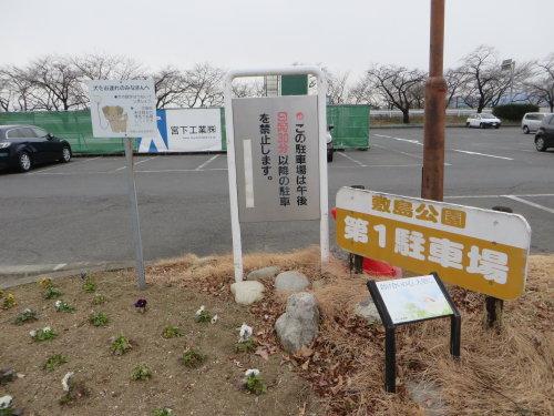 スターバックスは敷島公園の第一駐車場に