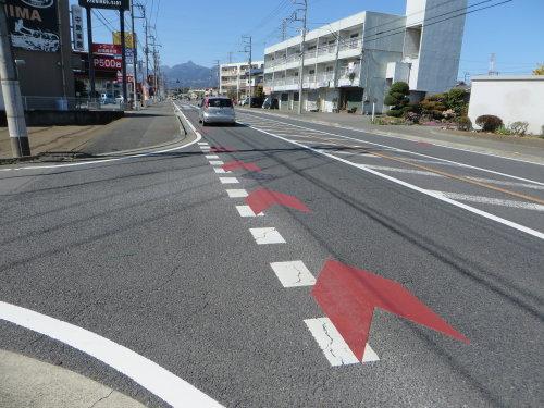 市内のあちらこちらに自転車通行帯が