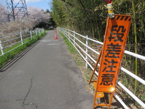 利根川サイクリングロードの凸凹が酷い
