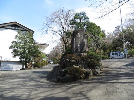 達磨寺のしだれ桜が見頃です^^