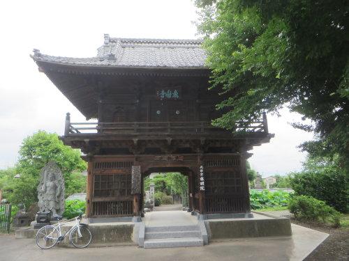 蓮の花が咲く魚遊寺へ、今年も