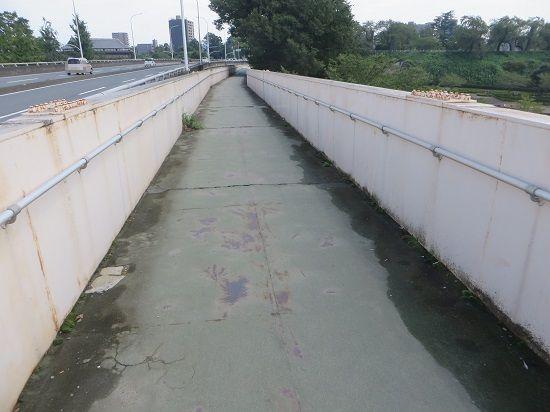 中央大橋から前橋公園に降りる階段の工事も